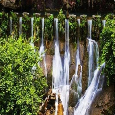 汝城县避暑解锁地,郴州周边一日游攻略之九龙江国家森林公园